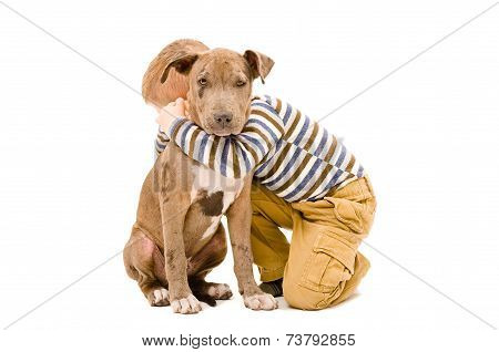 Portrait of a boy hugging a puppy pitbull