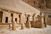 pic of hatshepsut  - The temple of Hatshepsut near Luxor in Egypt - JPG