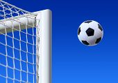 foto of game-cock  - football entering the net scoring a goal - JPG