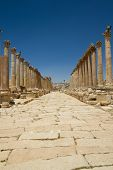 stock photo of cardo  - View on the cardo maximus main road of the Roman city of Jerash  - JPG