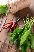 image of sorrel  - Sorrel on table close - JPG