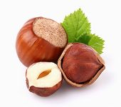 picture of hazelnut  - Hazelnuts with leaf - JPG