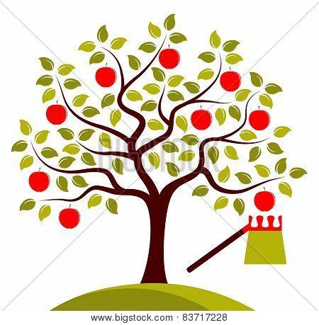 Apple Tree And Fruit Picker