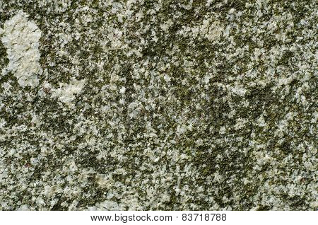 Granite texture with MOSS