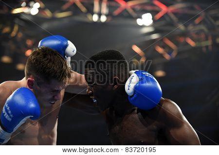 world series of boxing: Ukraine Otamans vs British Lionhearts