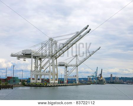 Harbor container cranes