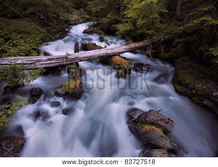 Deception Creek Olympic National Park