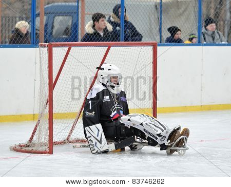 Sledge Hockey Goaltender