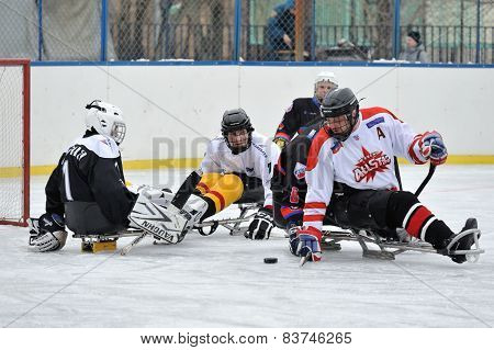 Sledge Hockey Goalie And Four Players