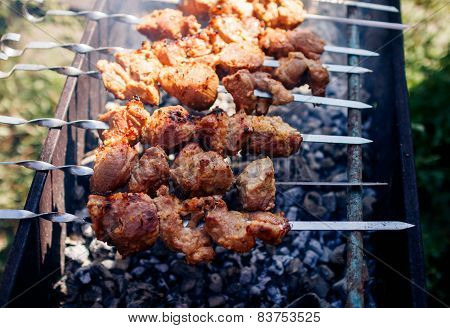 meat kebabs grilling at nature