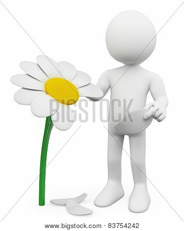 3D White People. 3D White People. Man Tears Off Petals Of Daisy