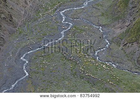 mountain walley