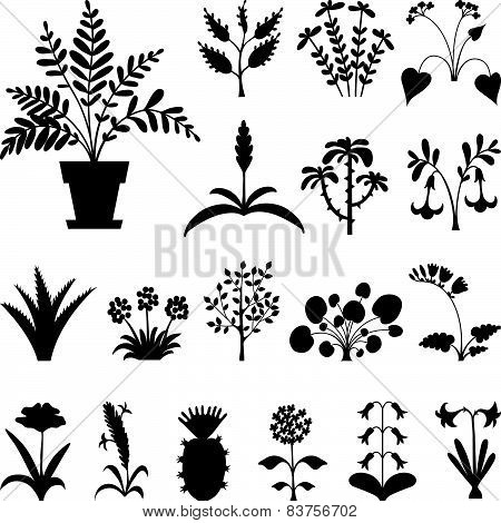 Set of stylized houseplants' silhouettes.