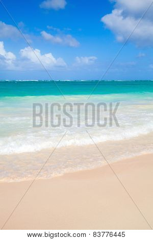 Vertical Coastal Sea Landscape. Atlantic Ocean Coast