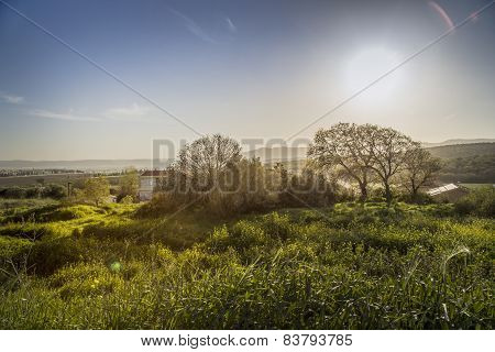 Lush Green Countryside With Rolling Hills