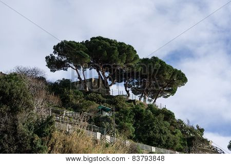 Hiking Trail In Riomaggiore