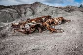 picture of wrecking  - abandoned car wrecked and rusted by the passage of time - JPG