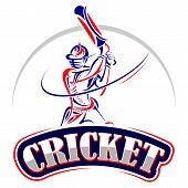 image of cricket bat  - vector illustration of cricket player playing with bat - JPG