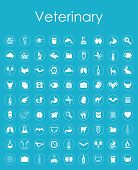 picture of veterinary  - It is a set of veterinary simple icons - JPG