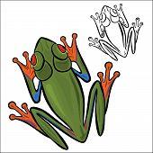 foto of tree frog  - Vector illustration  - JPG
