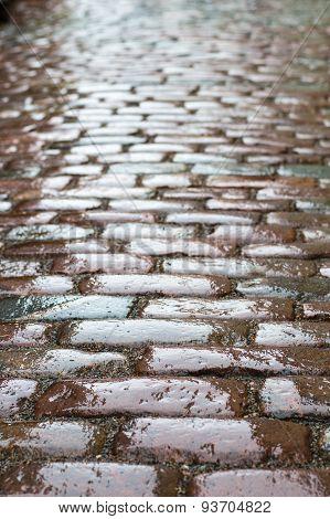 Wet Vintage Cobblestone Road Vertical View