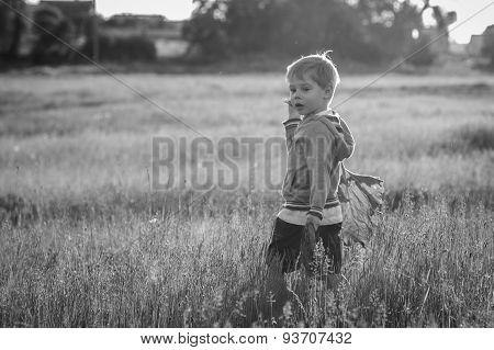 Little boy in a field of tall grass.