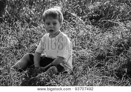Little boy in a field of tall grass.