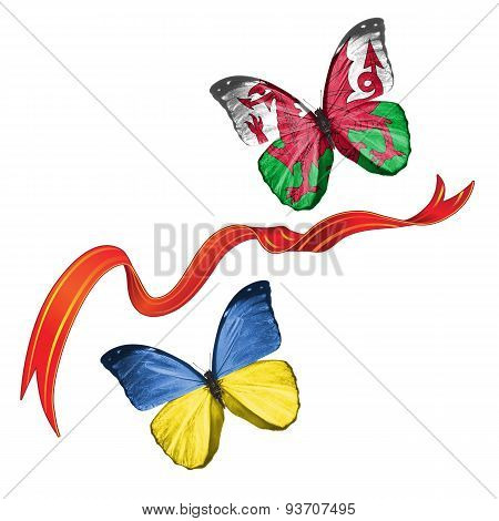 Two butterflies with symbols of Ukraine and Wales