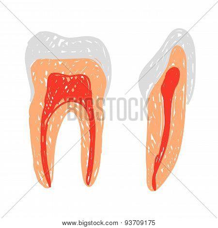 Teeth Doodle