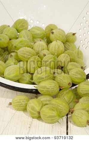 Cleaned Wet Gooseberries In A Colander
