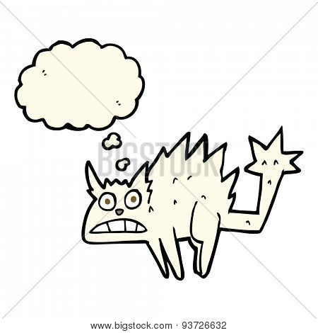 cartoon frightened cat with thought bubble
