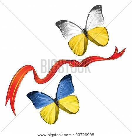 Two butterflies with symbols of Ukraine and Silesia