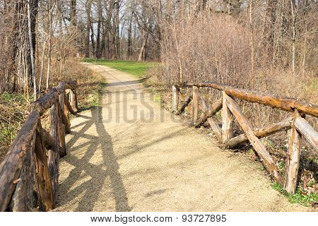Walking In A Park