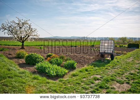Scenic Landscape of Lush Green Country Side and Rural Farm Land with Growing Patch in Springtime