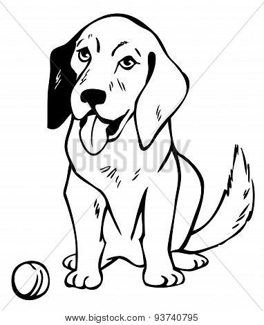 Drawing Dog With Ball