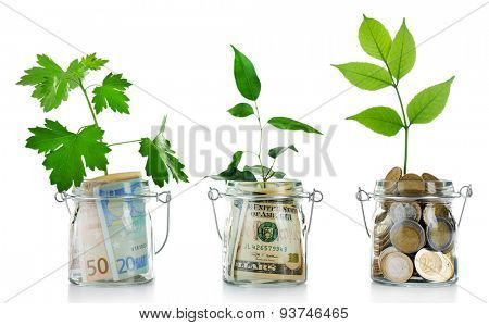 Money in glass jars with plants isolated on white