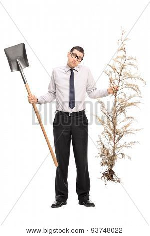 Full length portrait of a confused young guy holding a shovel and a whole tree isolated on white background