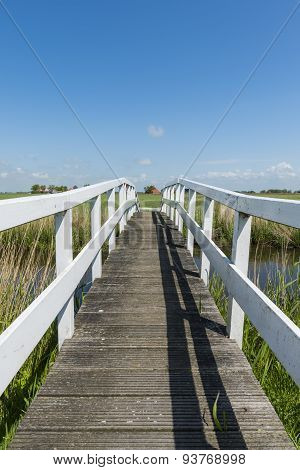 Bridge At Workum Friesland Vertical
