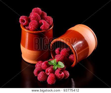 Harvest delicious raspberries in a ceramic pot