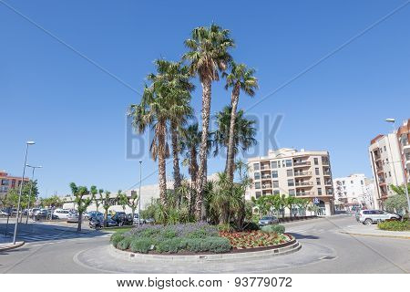 Palm Trees In Miami Platja, Spain