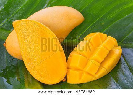 Yellow Mango Fruit On Banana Leaf