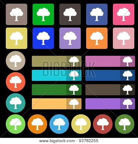 Tree, Forest  Icon Sign. Set From Twenty Seven Multicolored Flat Buttons. Vector
