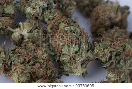Blue Widow Medicinal Marijuana