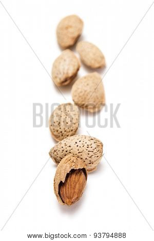 Dried almonds on white background