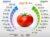 foto of nutrients  - Infographics about nutrients in tomato - JPG