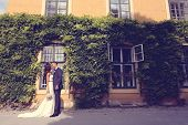 stock photo of ivy  - Bride and groom embracing in front of a beautiful house covered with ivy - JPG