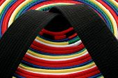 Martial Arts Belts - Circle