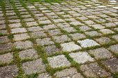 stock photo of interlocking  - Grungy interlocking concrete pavement with grass growing along its joint for textural background - JPG