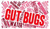 foto of water bug  - Gut Bugs word cloud on a white background - JPG