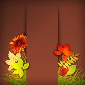 image of rowan berry  - Vector autumn background with rowan berry and maple fall leaves - JPG